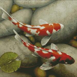 Морские животные и рыбы