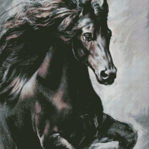 Лошади, Пегасы и Единороги